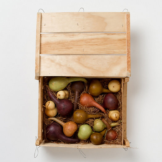 Dried Gourd Crate