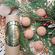 Douglas Fir Seed Bombs