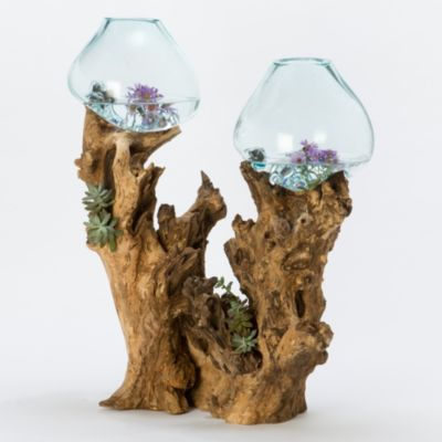 Freeform Bubble Terrarium, Large