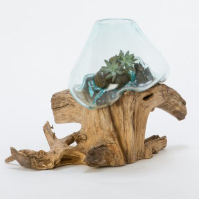 Freeform Bubble Terrarium, Medium