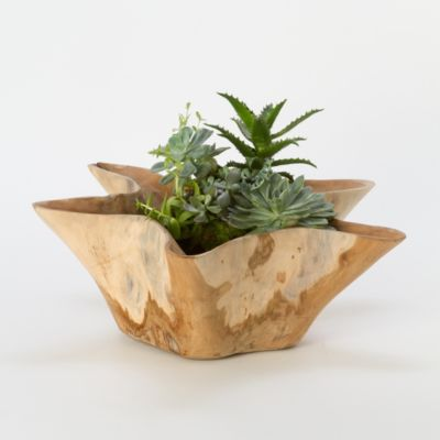 Carved Teak Stump Planter