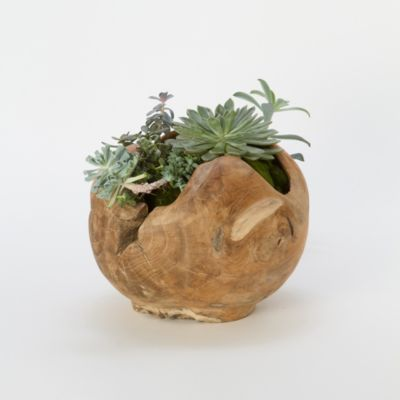 Carved Teak Footed Planter