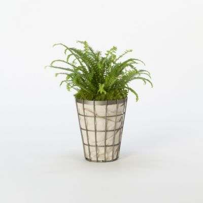 Tapered Wire Pot, Small