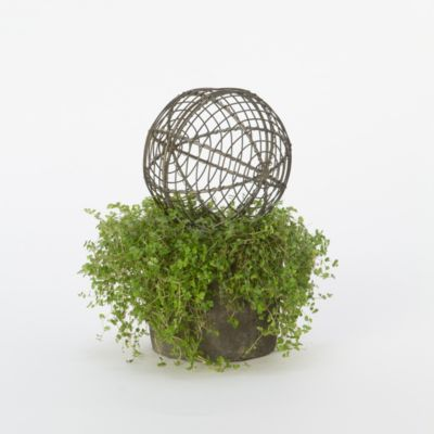 Wire Garden Sphere, Small