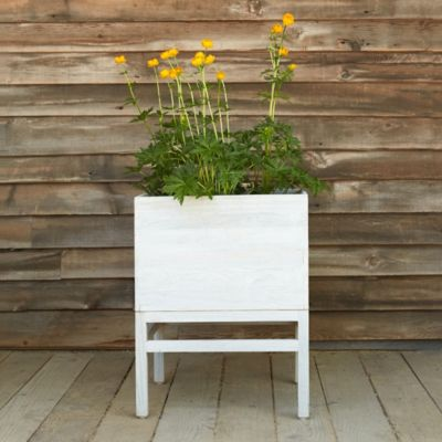 Raised Teak Cube Planter