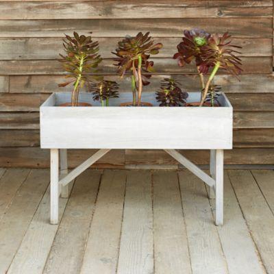 Raised Teak Trough Planter