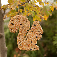 Squirrel Seed Ornament