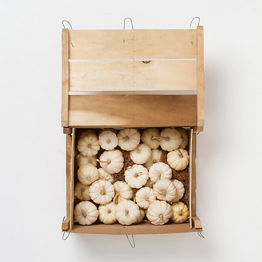 Mini White Pumpkin Crate