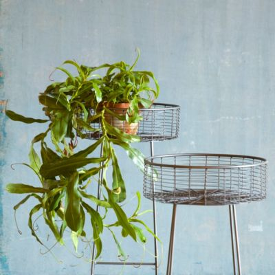 Round Basket Plant Stand, Large