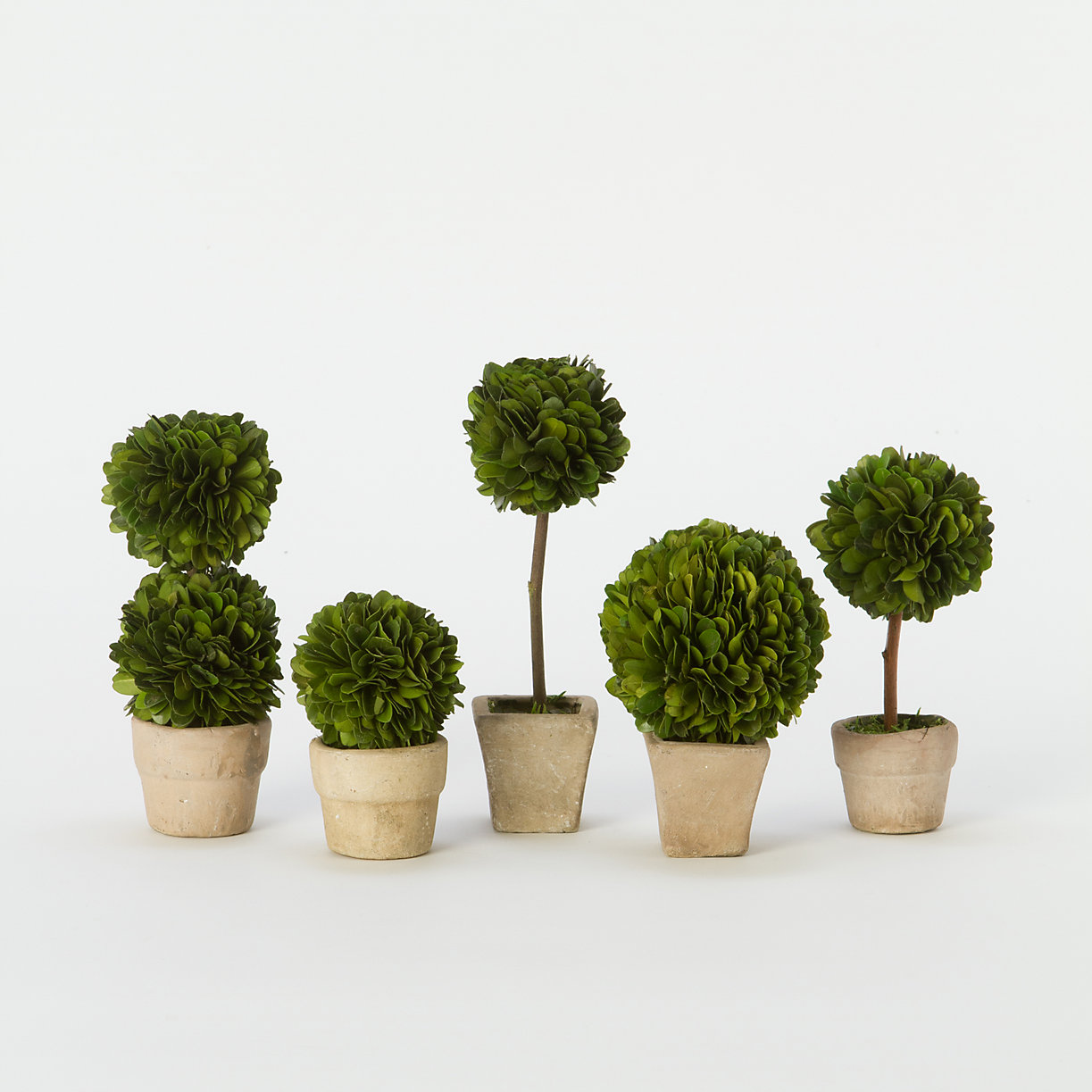 table top topiary