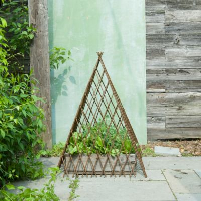 Expandable Willow Pyramid