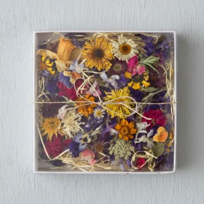 Dried Decorative Flowers
