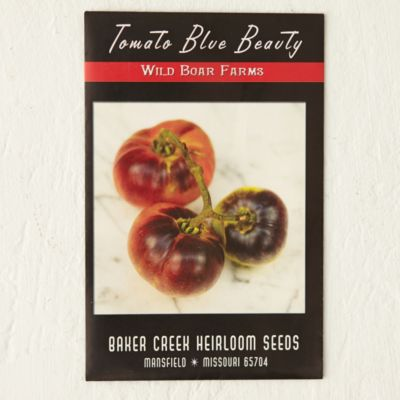 Blue Beauty Tomato Seeds