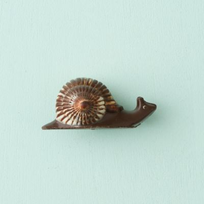 Dark Chocolate Snail