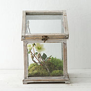 Sloped Roof Terrarium