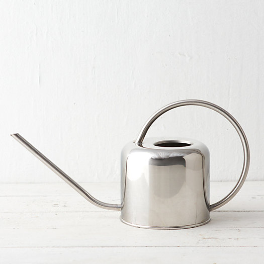 Stainless Watering Can, Small