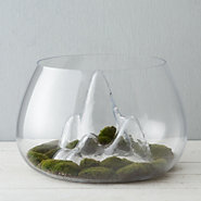 Mountain View Terrarium