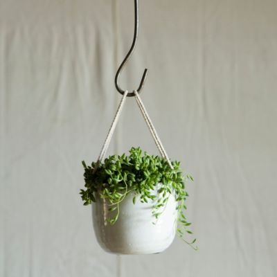 Hanging Bowl Planter