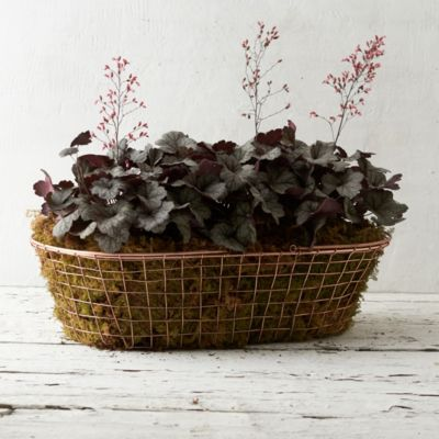 Copper Trug Basket