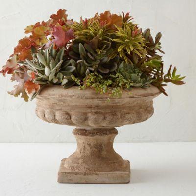Terracotta Urn Planter