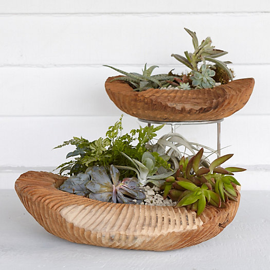 Rippled Teak Bowl Planter