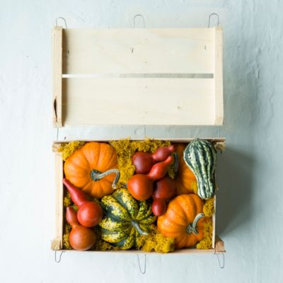 Fresh Pumpkin Crate