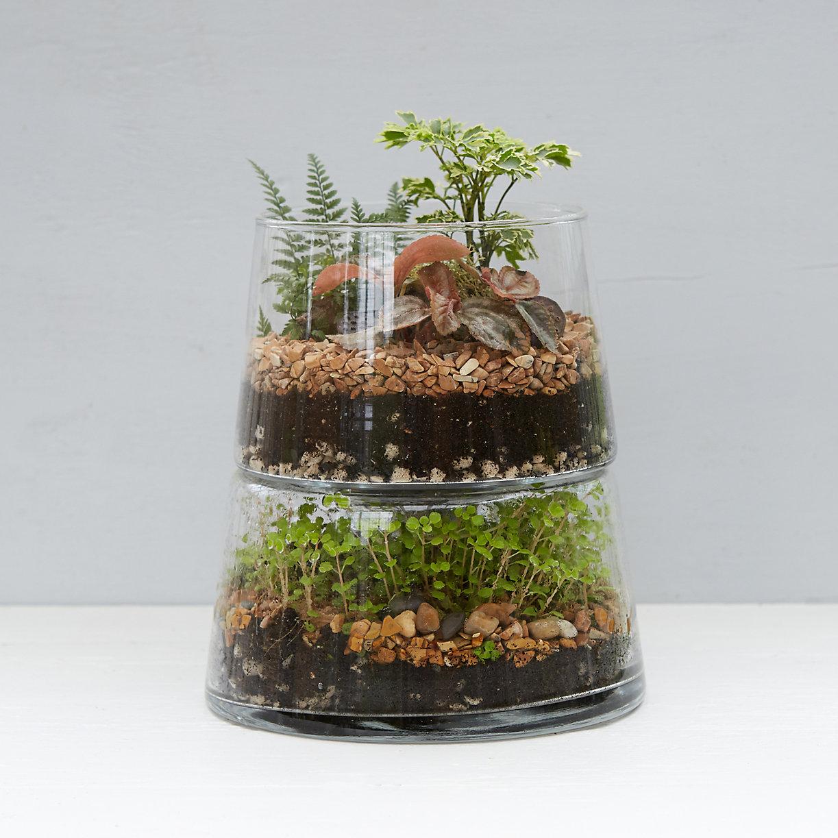 Double decker terrarium terrain for Terrarium supplies