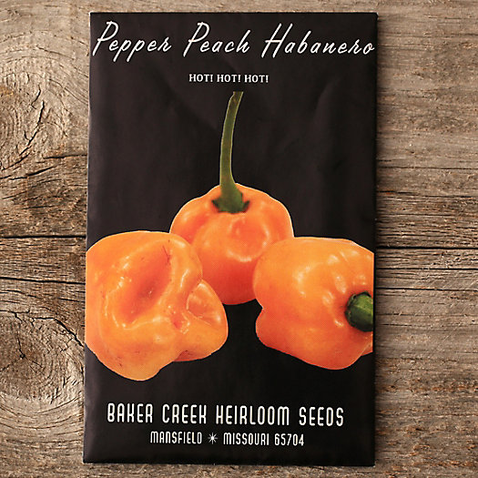 Peach Habanero Pepper Seeds