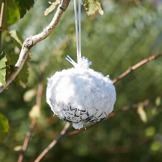 Bird Nesting Cotton Ball