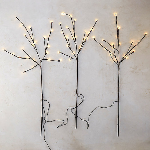 Twig Lights