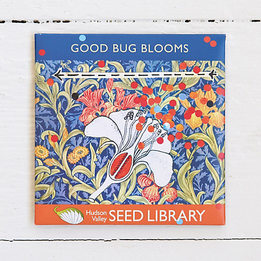 Good Bug Bloom Seeds