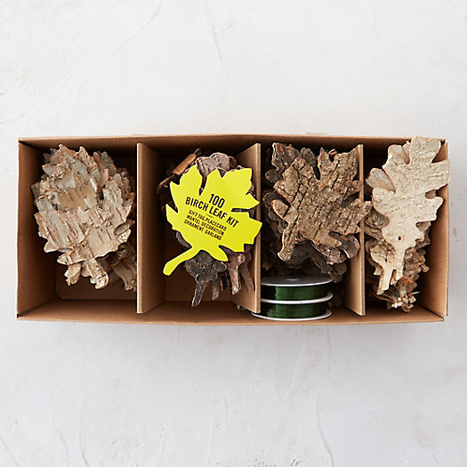 Birch Leaves Kit
