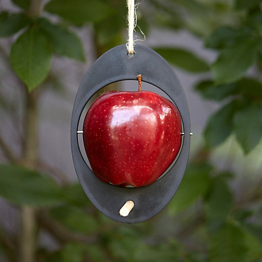 Recycled Plastic Apple Bird Feeder