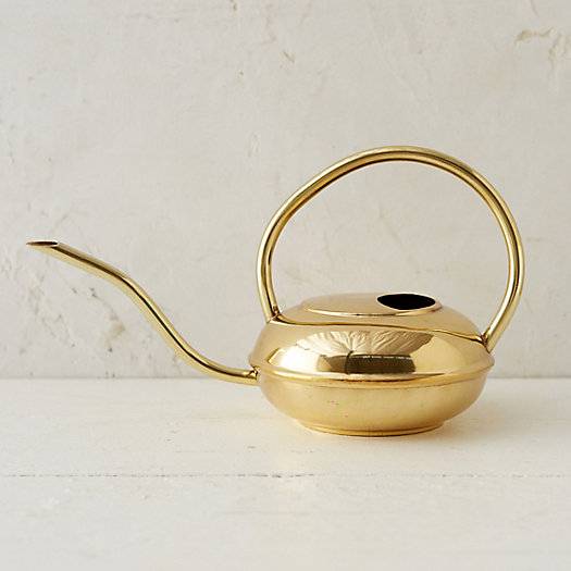 Polished Brass Watering Can