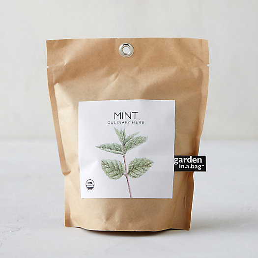 Mint Grow Bag