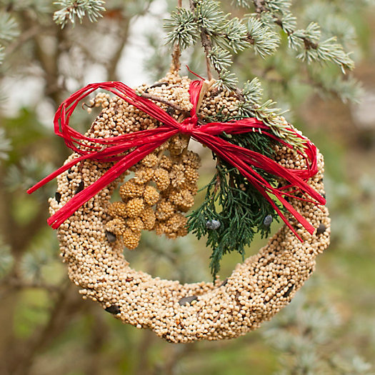 Edible Seed Wreath, Large