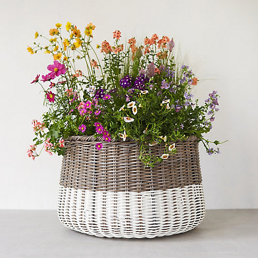 Color Blocked All Weather Wicker Basket