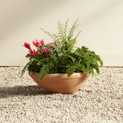 Købenler Terracotta Bowl Planter