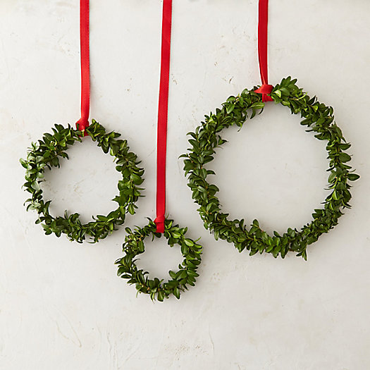 Fresh Boxwood Circlet Trio
