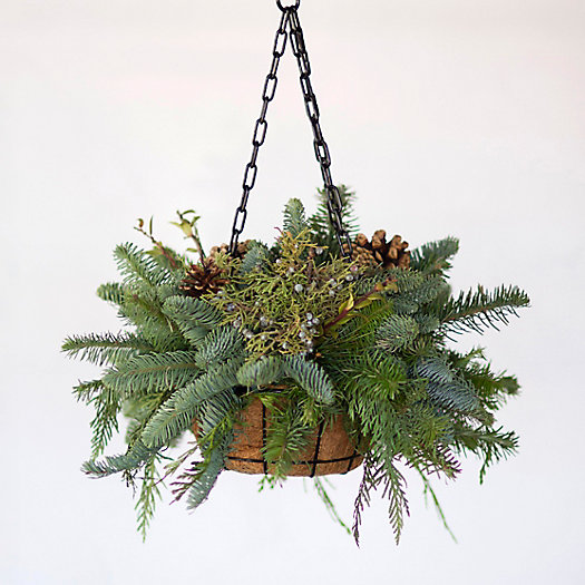 Evergreen Mix Hanging Basket