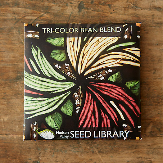 Tricolor Bean Blend Seeds