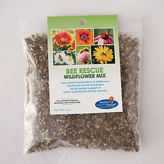 Bee Rescue Wildflower Seed Mix