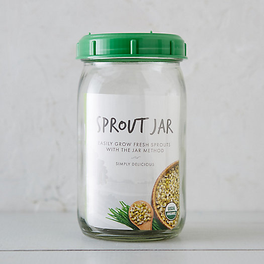 Alfalfa Sprout Grow Jar Kit