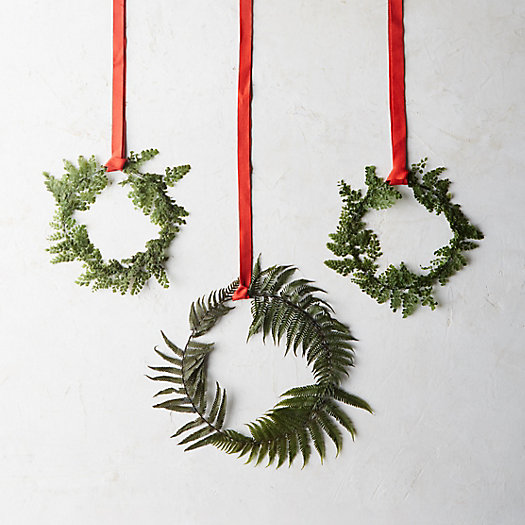 Preserved Fern Circlet Trio, Mix