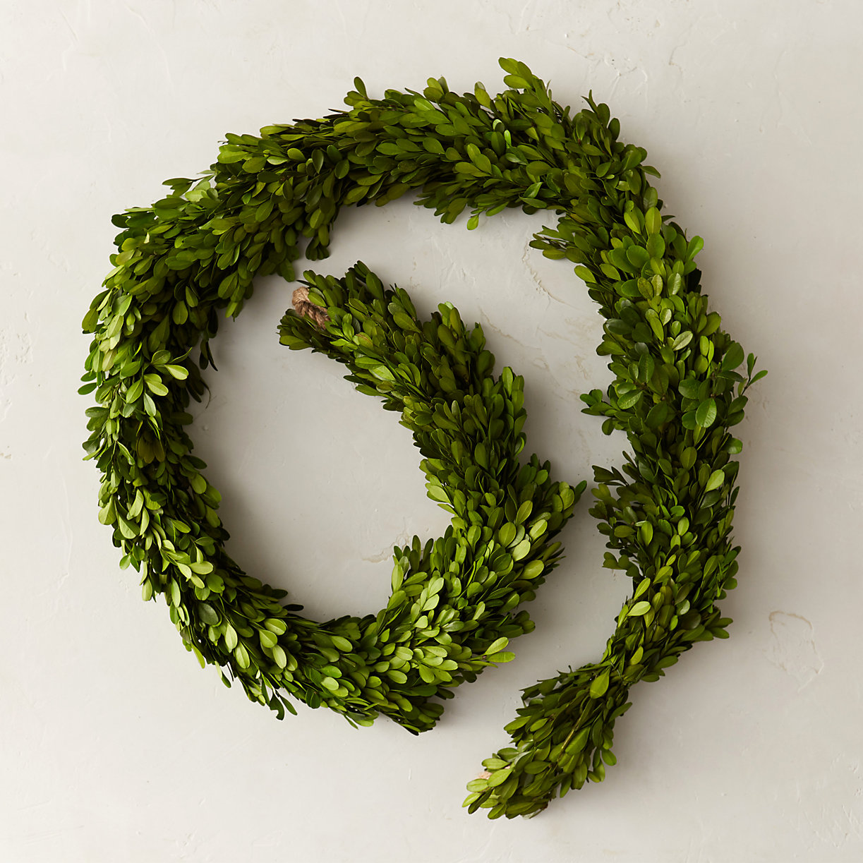 Preserving Tree Branches For Decoration Indoor Outdoor Wreaths Terrain