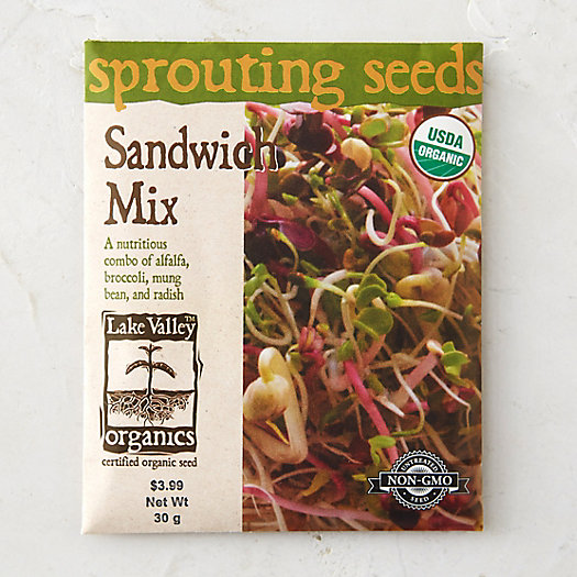 Sandwich Mix Sprouting Seeds