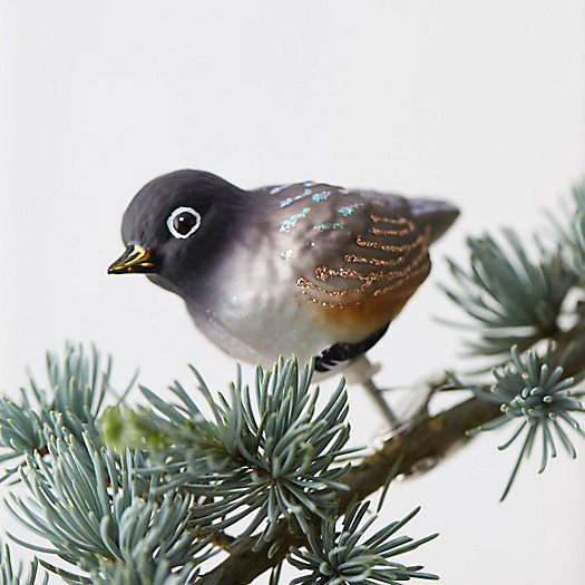 Robin Chick Glass Clip Ornament