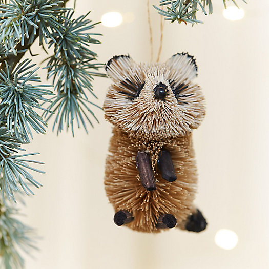 Brushy Raccoon Ornament
