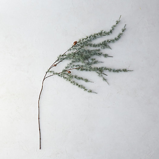 Faux Larch Branch