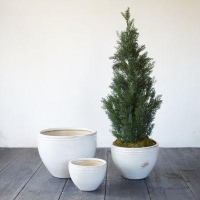 Double Band Earthenware Pot